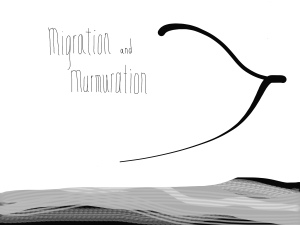 Migration and Murmuration pic